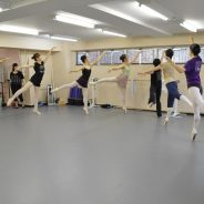 今日のお客さま 学生創作バレエ公演「青い鳥」